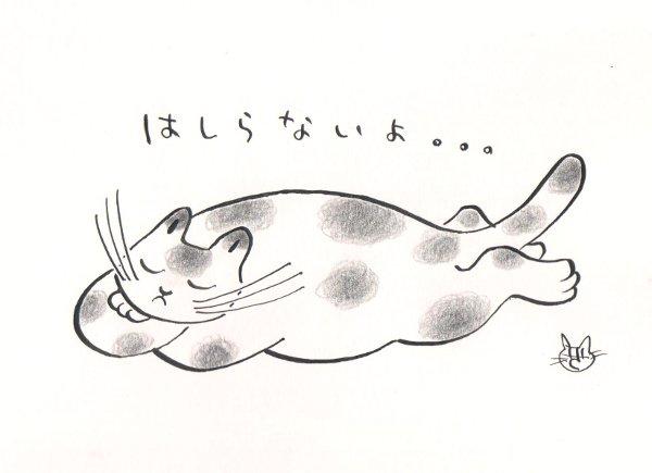 師走の猫 2