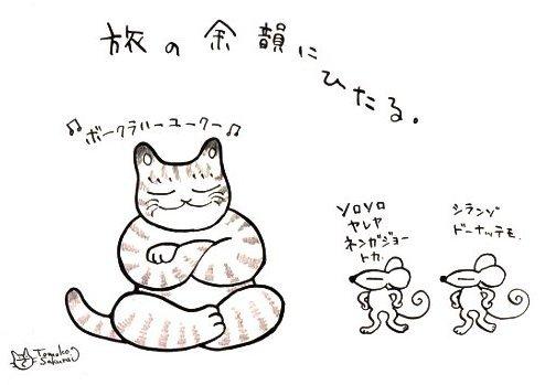 師走の猫 8
